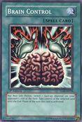 BrainControl-TLM-AE-SR-1E