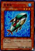 TorpedoFish-307-JP-C