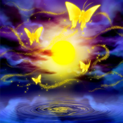 Butterflyoke-OW