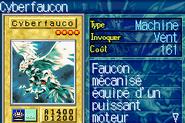 CyberFalcon-ROD-FR-VG