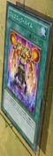 GorgonicPile-JP-Anime-ZX