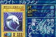 WhiteDolphin-GB8-JP-VG
