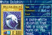 WhiteDolphin-ROD-EN-VG