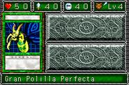 PerfectlyUltimate-DDM-SP-VG
