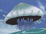 Jellyfish-JP-Anime-DM-NC