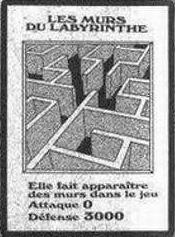File:LabyrinthWall-FR-Manga-DM.png