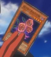 RevivalRose-JP-Anime-5D