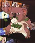 Des Koala (Character)