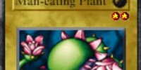 Man-eating Plant (FMR)