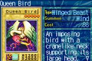 QueenBird-ROD-EN-VG