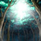 AncientForest-DG-EN-VG-Field