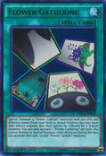 FlowerGathering-DRL3-EN-UR-1E
