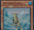 Treeborn Frog