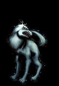 Wolf-WC10-EN-VG-NC