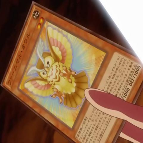 File:FluffalOwl-JP-Anime-AV.png