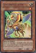 GoldenLadybug-LODT-FR-R-1E