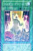 WonderClover-JP-Anime-5D