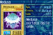 Jellyfish-ROD-IT-VG