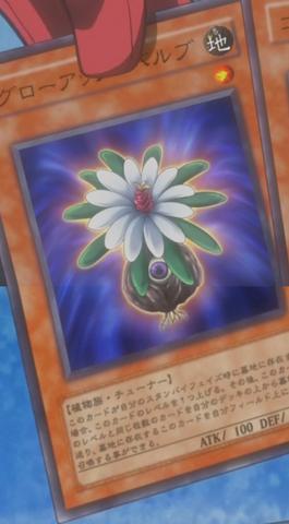 File:GlowUpBulb-JP-Anime-5D.png