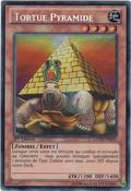 PyramidTurtle-LCYW-FR-ScR-1E