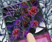 RoseCurse-EN-Anime-5D