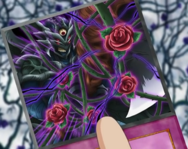 File:RoseCurse-EN-Anime-5D.png