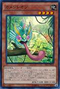 MaskedChameleon-TRC1-JP-SR