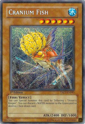 CraniumFish-TAEV-EN-ScR-1E