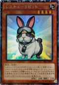 RescueRabbit-TRC1-JP-CR