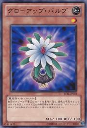 GlowUpBulb-STBL-JP-C