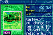 Forest-ROD-FR-VG