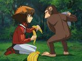 Yu-Gi-Oh! GX - Episode 066
