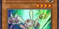 Essence Bunny Fighter
