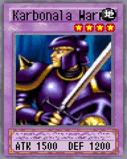 Karbonala Warrior 2004