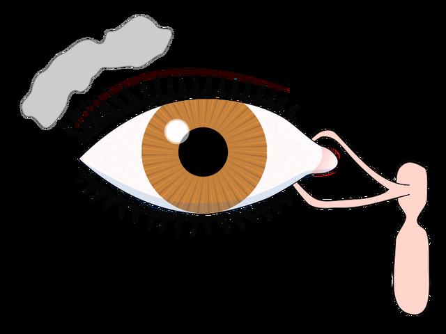 File:800px-Tear system svg.png