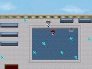 Pool Event