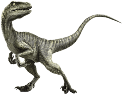 Charlie (Velociraptor)