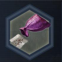 Purple seed bag