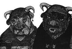 Zorda and Zorilla