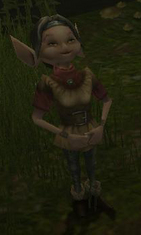 Forest elf female
