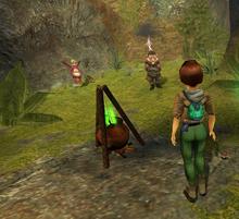 Dwarf fairy garden 589x537