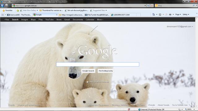 File:My google.png