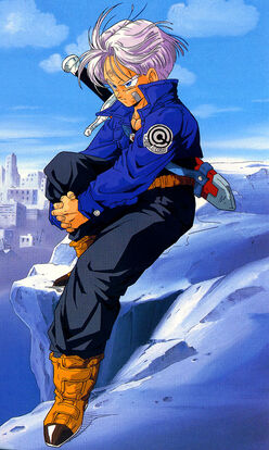 Future-Trunks-trunks-24615120-500-835