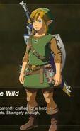 WildSetFullHylianGear