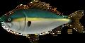 Majora's Mask 3D Fish Ambrosial Amberjack (Ocean Fishing Hole).png