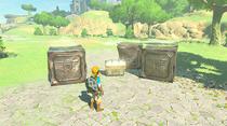 Amiibo Guardian function