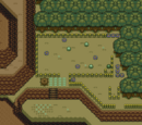 Treasure Field