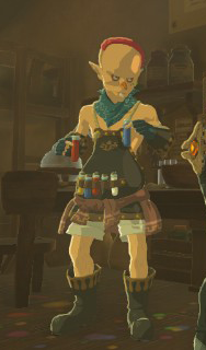 File:Sayge (Breath of the Wild).png