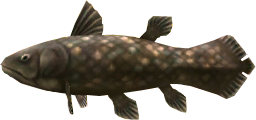 File:Majora's Mask 3D Fish Ancient Fish (Swamp Fishing Hole).png