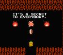 Geheimnisvoller Bulblin